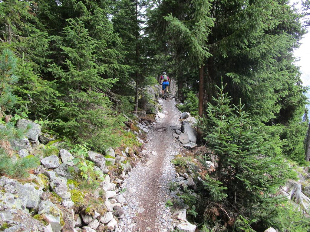 Plattweg_trail