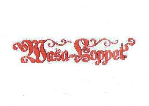 wasa-loppet